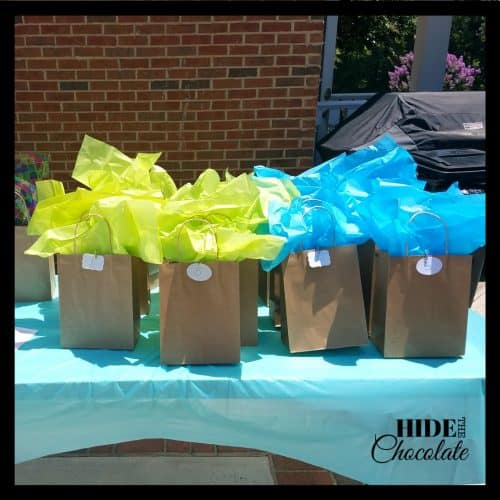 Book Reveal Party - Gift Bags